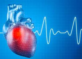 Виндамэкс® – первое пероральное лекарственное средство для терапии  транстиретиновой амилоидной кардиомиопатии (ATTR-КМП)