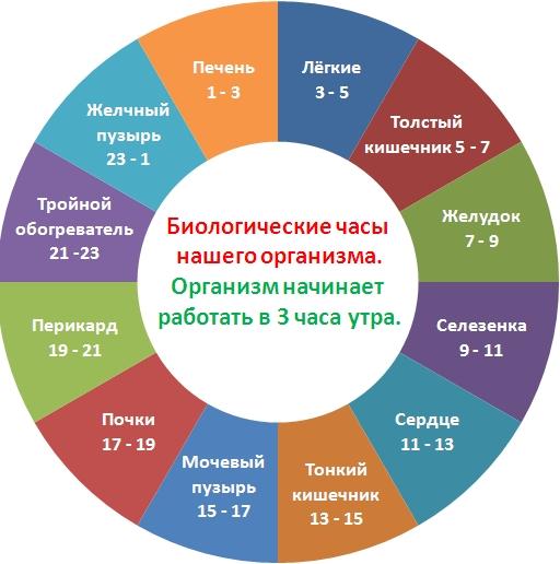самый лучший диетолог москвы